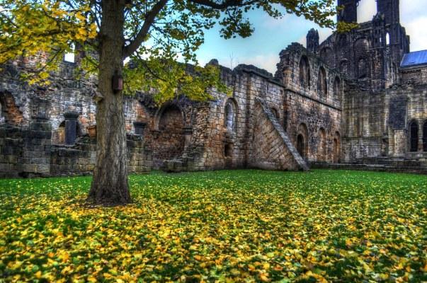 Kirkstall Abbey Fallen Leaves