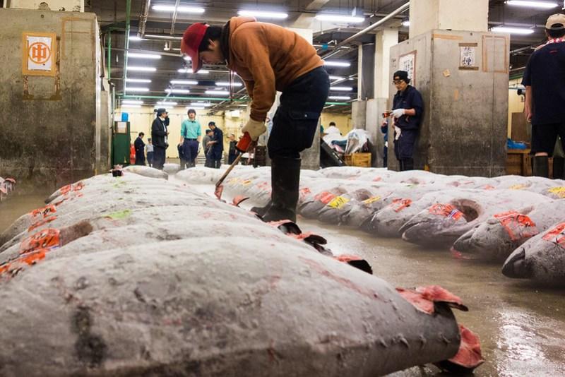 2013-06-24 Tsujiki Fish Market - DSC06357-FullWM