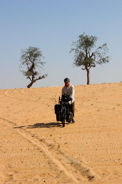 Camping in the UAE dunes