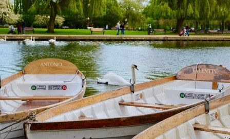 Boats and Birds, Stratford-Upon-Avon | subherwal | Flickr