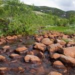 9 viajefilos en Noruega, Hardangervidda 06