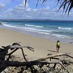 03 Viajefilos en Australia, Nossa NP 006