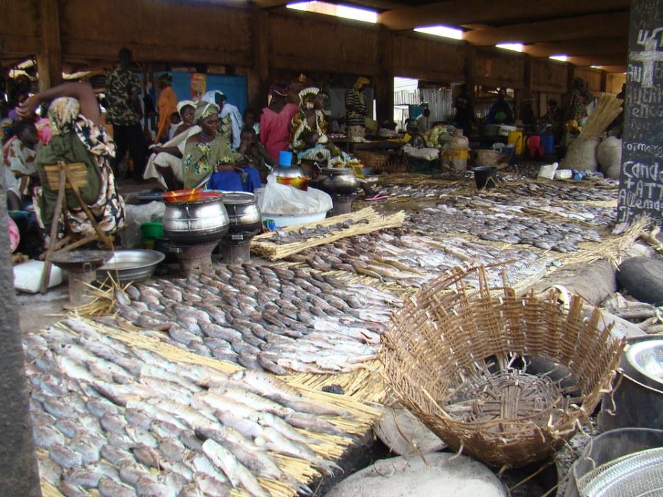 puesto de pescado Mercado del puerto de Mopti Mali 14