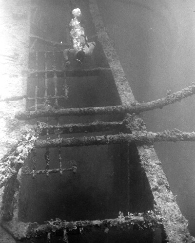 Herbert Ward Diving the Cormoran