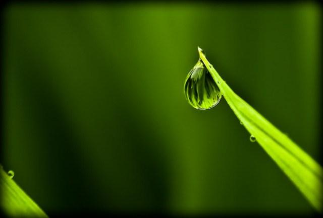 Drop refraction