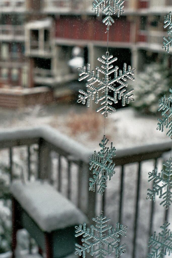Rotterdam Daily Photo: White Christmas Throwback