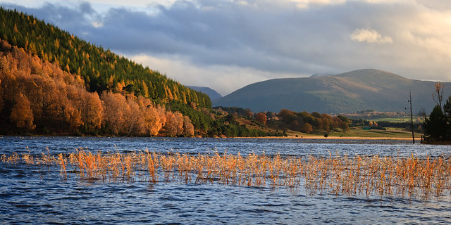 Autumn at Loch Pityoulish