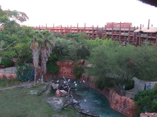 Jambo House at the Animal Kingdom Lodge