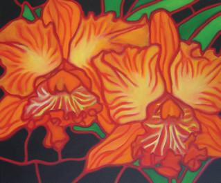 Hawaiian Orchids