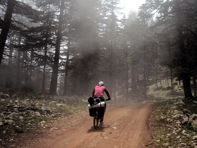 I rode into thick clouds every day of this trip -- fun weather. by bryandkeith on flickr