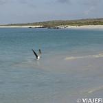 Viajefilos en La Espanola, Galapagos 089