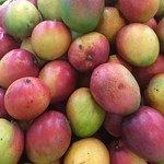 Mangoes, red, orangey