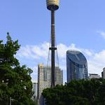 Viajefilos en Australia. Sydney  081