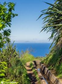Madeira - 1349