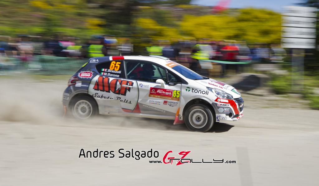 Rally_Portugal_AndresSalgado_17_0009
