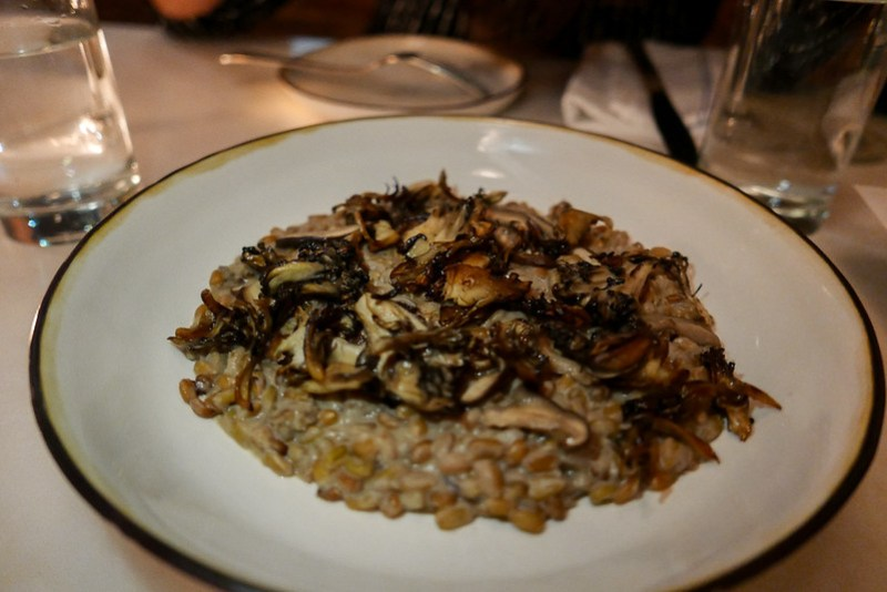 Freekeh Risotto, Mushrooms ($22)