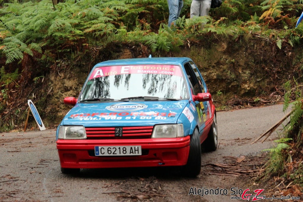 rally_sur_do_condado_2012_-_alejandro_sio_14_20150304_1713856718