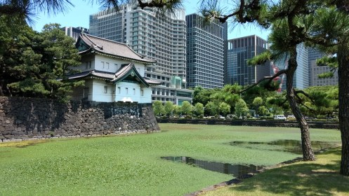 Imperial Palace grounds
