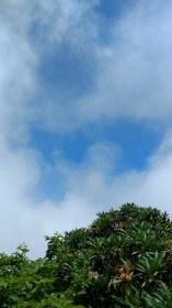 Blue sky all too late