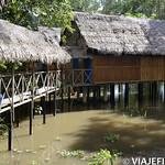 Viajefilos en la Amazonia, Peru 003