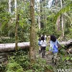 Viajefilos en la Amazonia, Peru 052