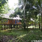 Viajefilos en la Amazonia, Peru 024