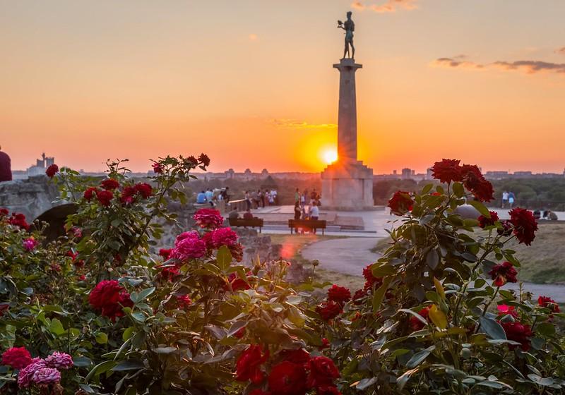 Flowers & Sunset