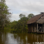 Viajefilos en la Amazonia, Peru 075