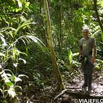 Viajefilos en la Amazonia, Peru 028