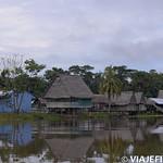 Viajefilos en la Amazonia, Peru 080