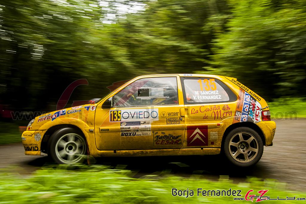 Rally_PrincesaDeAsturias_BorjaFernandez_17_0027