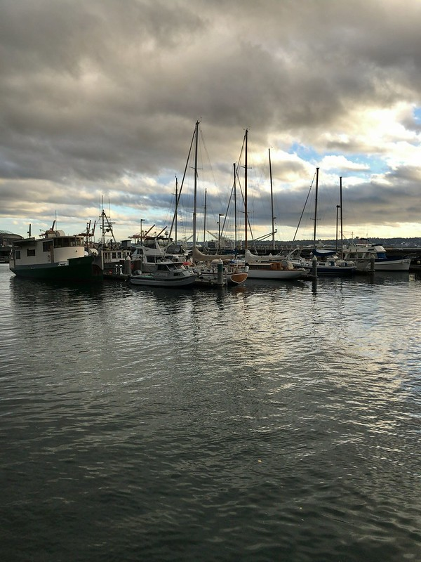 elliot bay boats