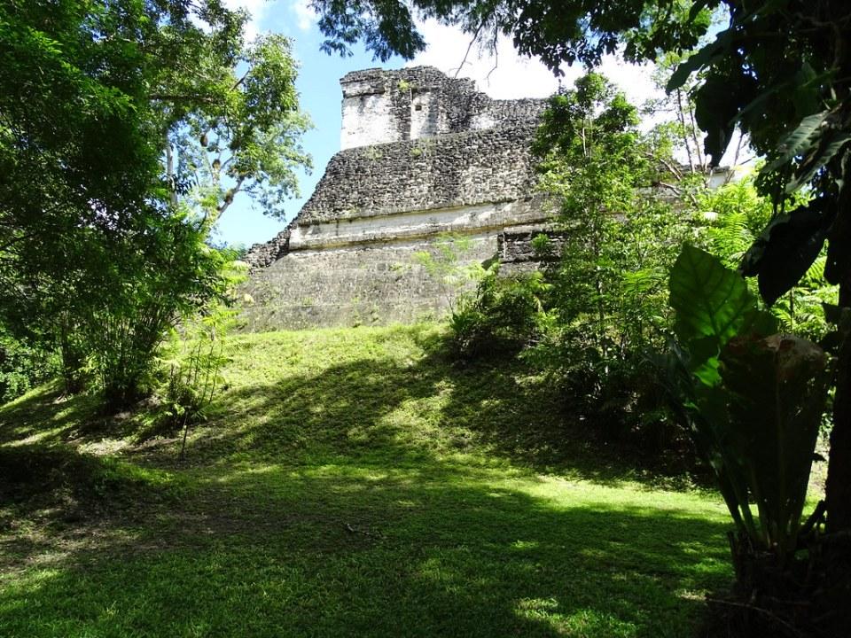 Tikal Templo Talud Tablero estructura 5C-49 ciudad Maya Sitio Arqueologico Guatemala 01