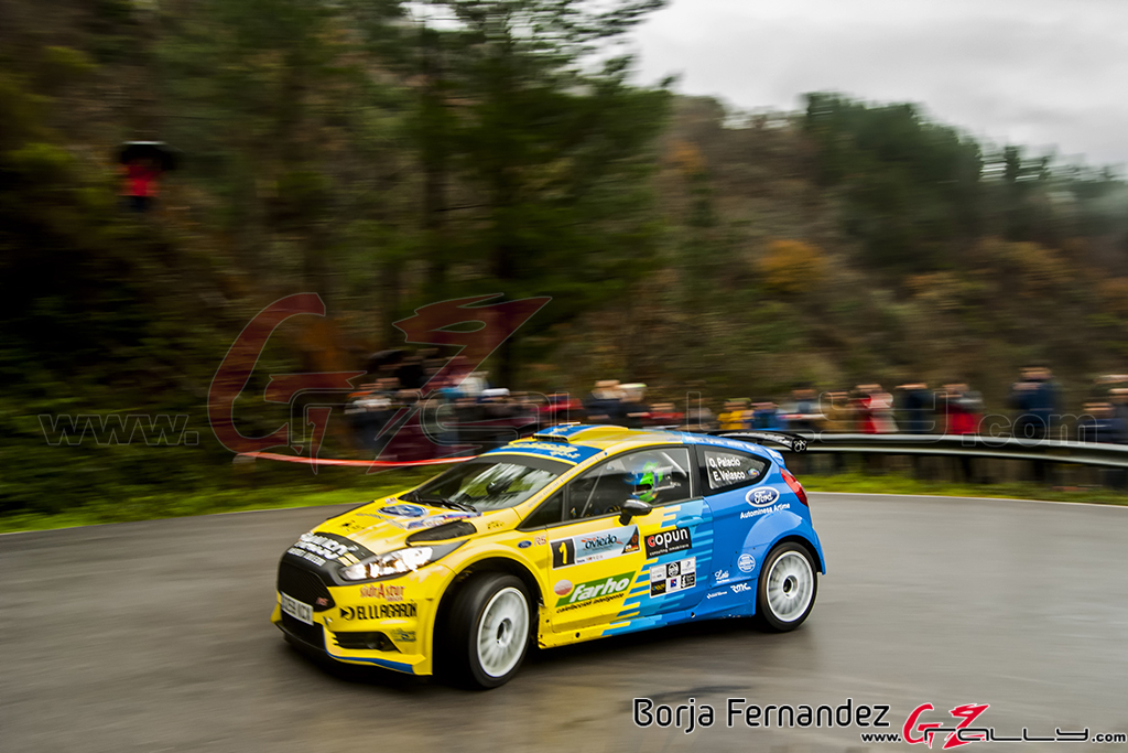 Rally_CangasDeNarcea_Fernandez_17_0022