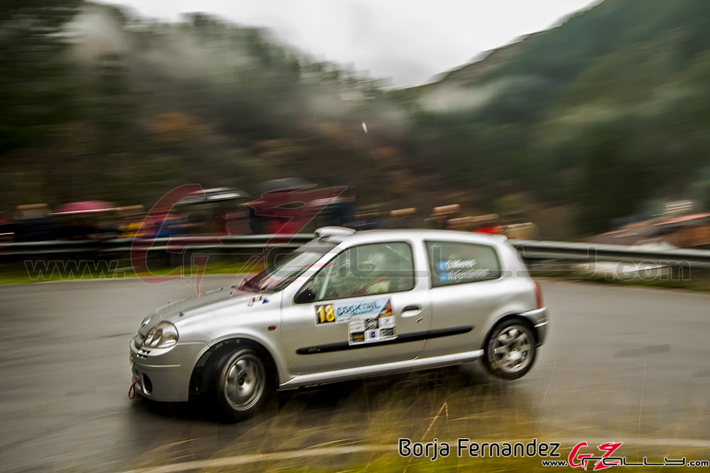 Rally_CangasDeNarcea_Fernandez_17_0032