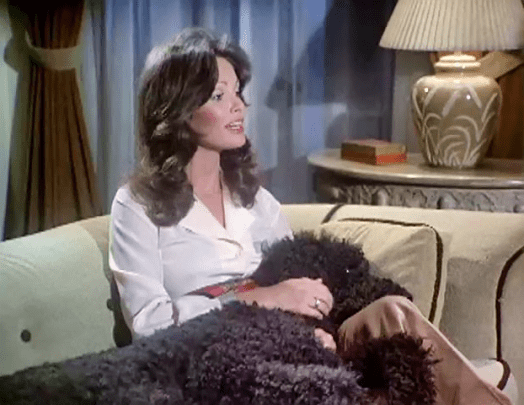 Jaclyn Smith (1)