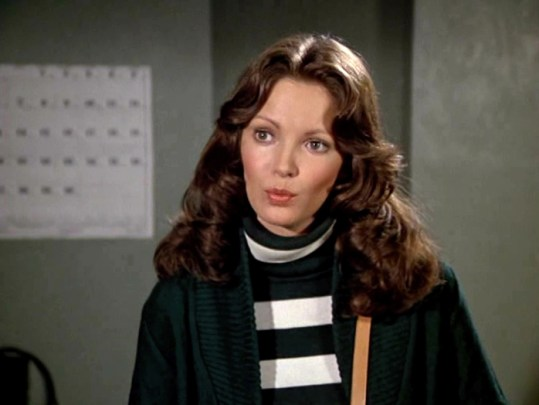 Jaclyn Smith (47)