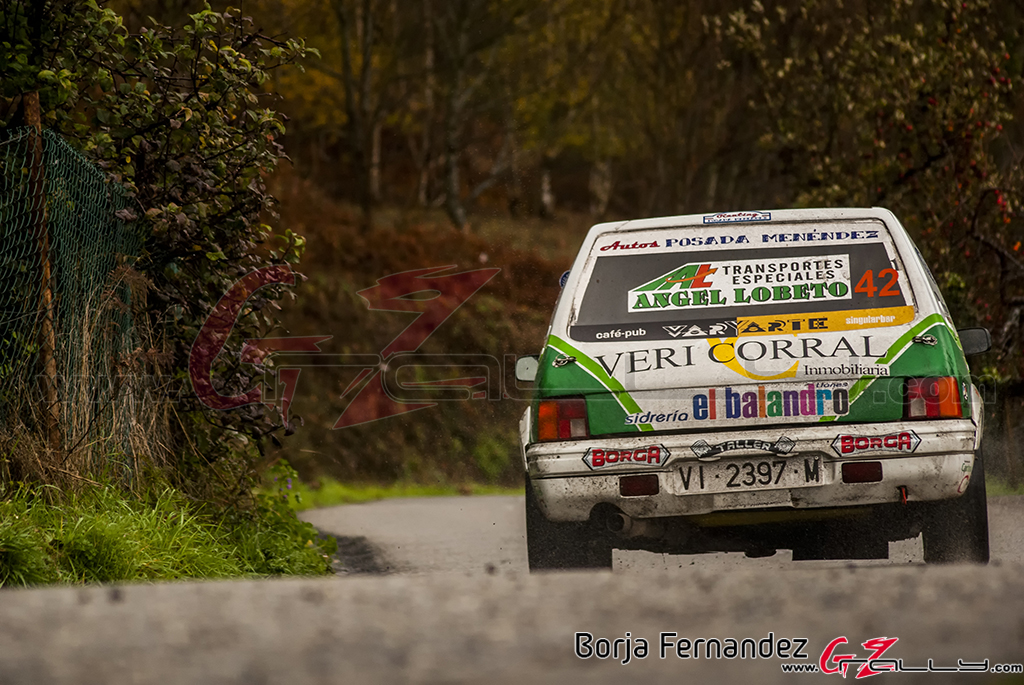 Rally_CangasDeNarcea_Fernandez_17_0006