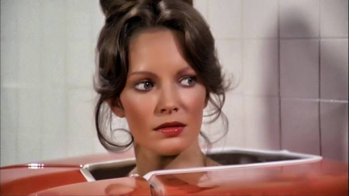 Jaclyn Smith (293)
