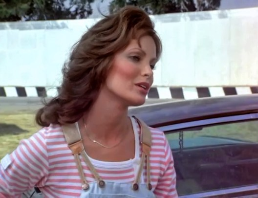 Jaclyn Smith (86)