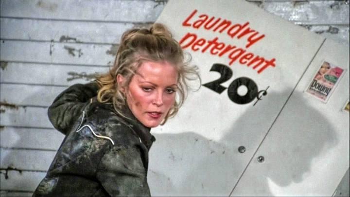 Cheryl Ladd (1099)