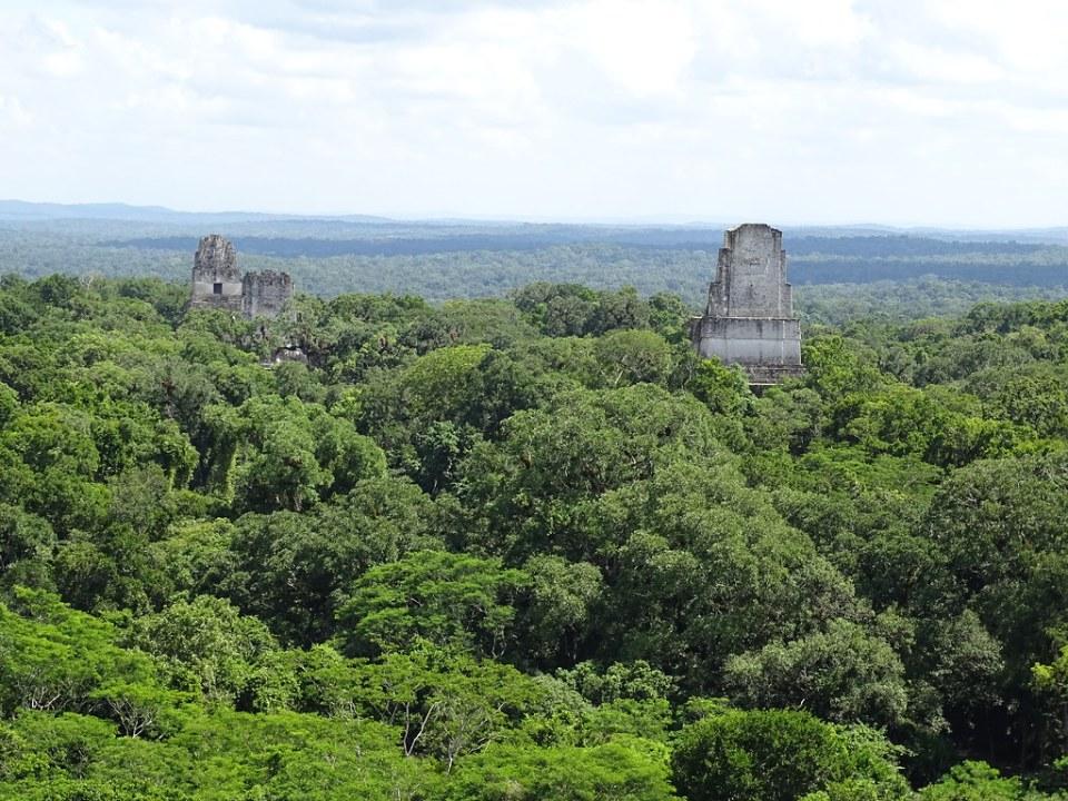 Templo IV o Templo de la Serpiente Bicefala desde Mundo Perdido ciudad Maya Sitio Arqueologico Guatemala 02