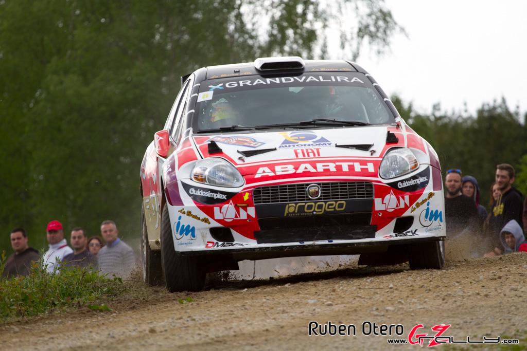 rally_de_curtis_2014_-_ruben_otero_31_20150312_1823217559