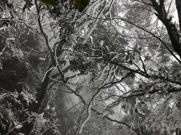 Jinfushan Scenic Spot