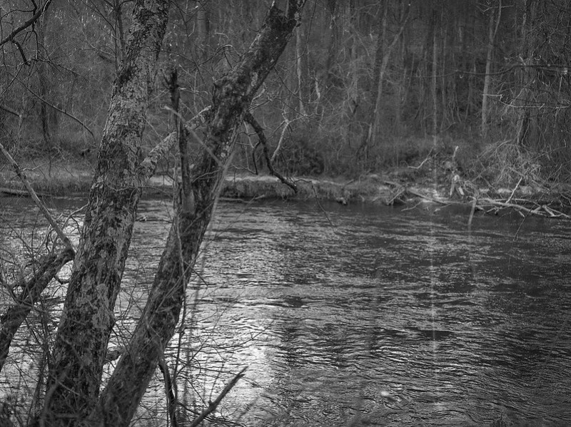 tributary, French Broad River, urban park, Asheville, North Carolina, Mamiya 645 Pro, mamiya sekor 80mm f-2.8, 12.30.17