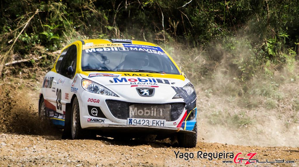 rally_de_curtis_2014_-_yago_regueira_41_20150312_2093310686
