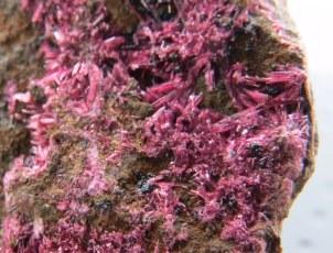 Mineral: Eritrina