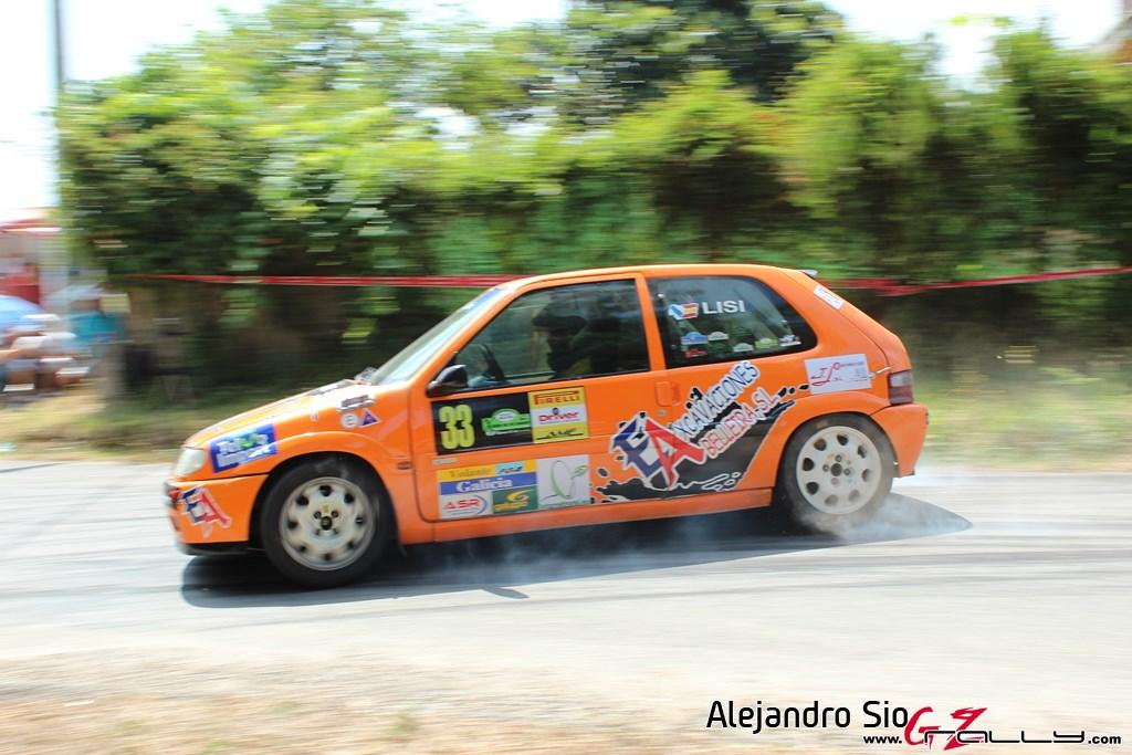x_rally_sur_do_condado_81_20150307_1287724476