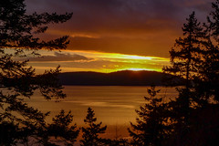 Samish Sunset-008