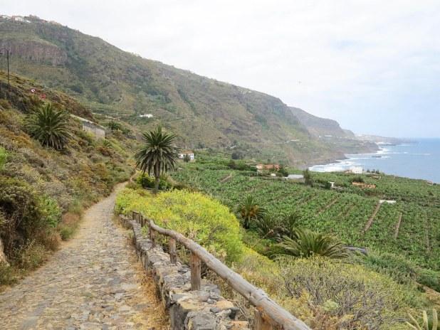 Recorrido por el norte de Tenerife